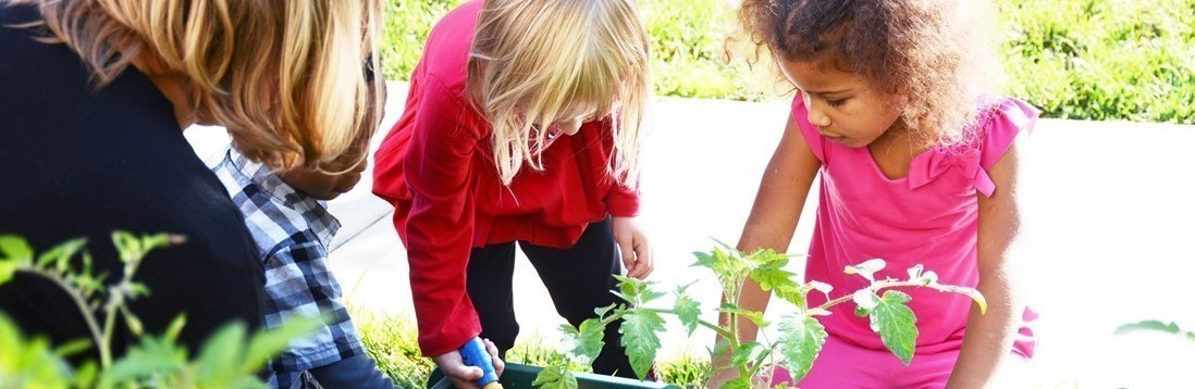 Teacher and students planting flowers