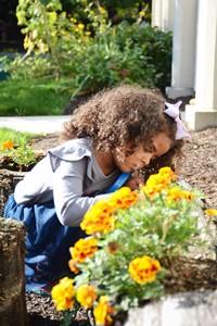 preschooler planting flowers